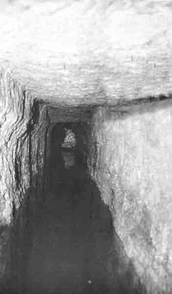 Please Return the Siloam Inscription to Jerusalem · The BAS